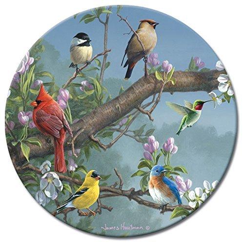 CounterArt Beautiful Songbirds Lazy Susan Glass Serving Plate by CounterArt