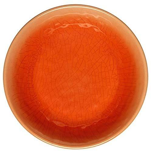 Melange 6-Piece 100 Melamine Dinner Plate Set Crackle Collection  Shatter-Proof and Chip-Resistant Melamine Dinner Plates  Color Red Orange