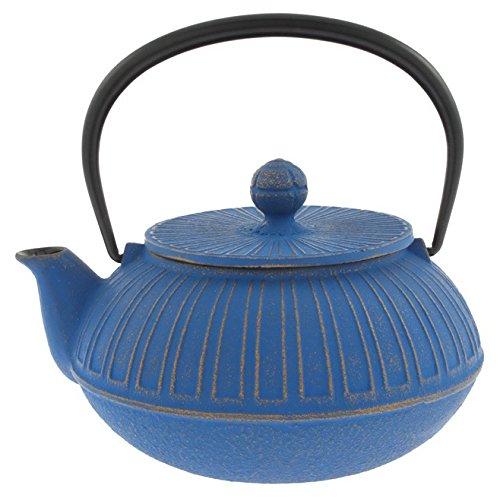 Iwachu 480-878 Japanese Iron Tetsubin Teapot Azure