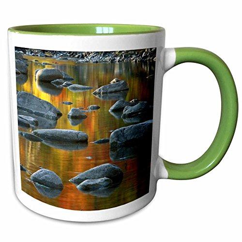 3dRose Danita Delimont - Charles Gurche - Rivers - USA West Virginia Monongahela NF South Fork Potomac River  - 11oz Two-Tone Green Mug mug_189849_7