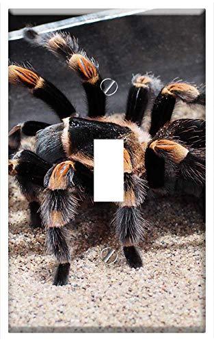 Switch Plate Single Toggle - Tarantula Spider Animal Hairy Nature Species 1