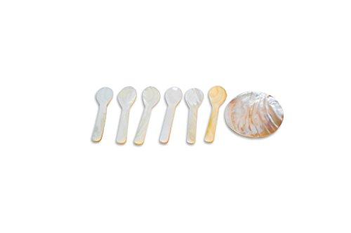 """Caviar Spoon 3.5"""" (6 Qty) + (free 1 Qty Plate 2.5"""")"""