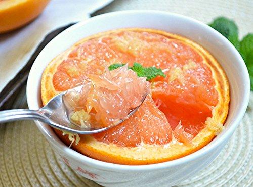 --set Of 6-- Grapefruit Spoons Stainless Steel Dessert Windsor Serrated Edge Flatware Silverware Length - 6 Inch