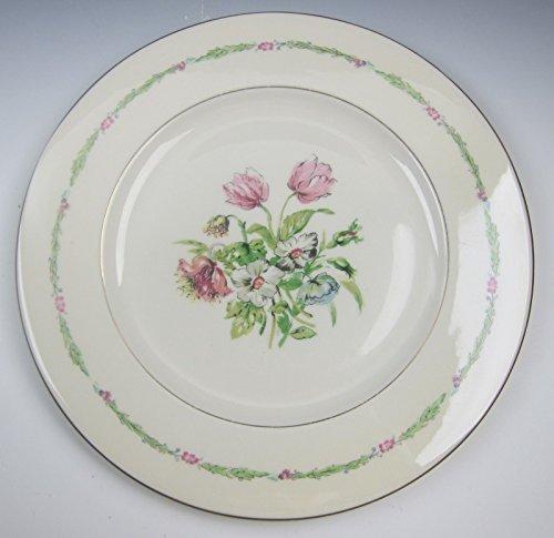 Haviland China GARDEN FLOWERS Dinner Plates VERY GOOD