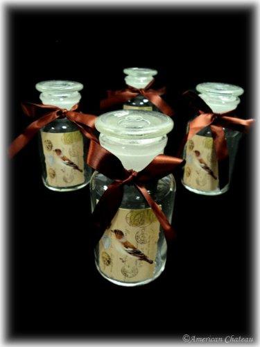 Vintage Set Lot 4 Piece Glass Apothecary Spice Jar Food Storage Jars with Lids