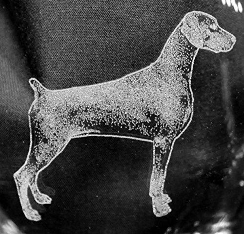 Muddy Creek Reflection Doberman Pinscher Dog Laser Etched White Wine Juice Glass Set 2 SWW