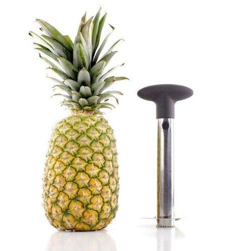 Stainless Steel Fruit Pineapple Corer Slicer Peeler by 247 store