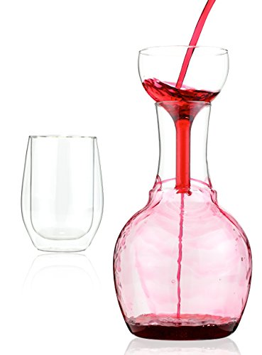 Kitchen Gizmo Wine Decanter Aerator and Wine Glass