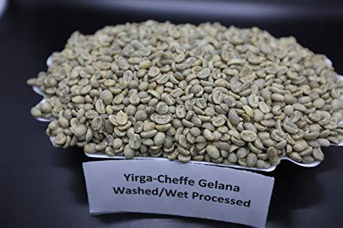 Ethiopian Yirgacheffe Gelana Grade 1 Wet Processed 3Lb Unroasted Green Coffee By - Lulo Coffee