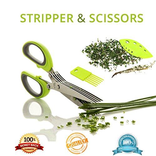 Herb Stripper Herb Scissors Green Kitchen Set  Stainless Steel Blades Natural Stripper  Easy Handling Set