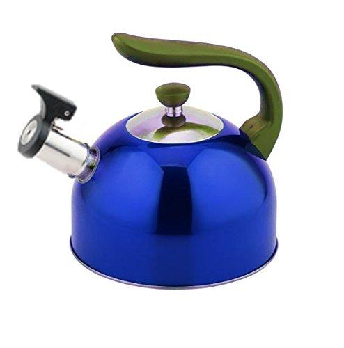 Stainless Steel Whistling Kettle 3 liter3 Quart Hot Water Tea Stovetop Blue