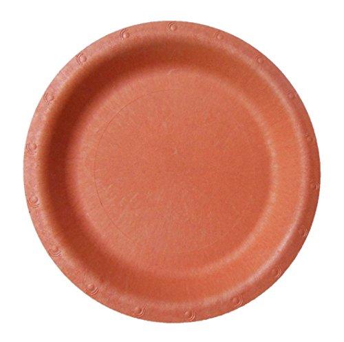 Blueware 250 Bulk 9 Compostable Plate Terracotta Red