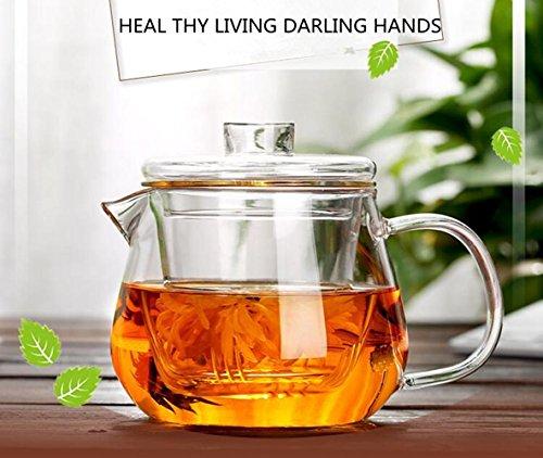 ChSukho Transparent glass teapot  borosilicate glass heat-resistant teapot