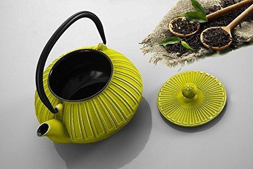 Cast Ä°ron Teapot Green Teapot Colourful Teapot Hand Painted Teapot Gift