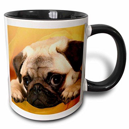 3dRose 3dRose Pug - Two Tone Black Mug 11oz mug_3644_4  BlackWhite