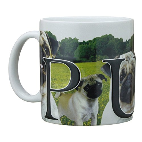 Americaware My Pet Mug Best Friend Series Pug Raised Lettering 18 oz