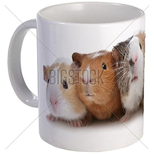 11 ounce Mug - Five Guinea Pigs Mug - S White