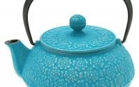 Iwachu-480-944-Japanese-Iron-Tetsubin-Teapot-Turquoise-30.jpg