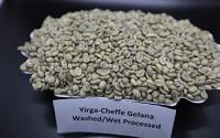 Ethiopian-Yirgacheffe-Gelana-Grade-1-Wet-Processed-3Lb-Unroasted-Green-Coffee-By-Lulo-Coffee-64.jpg