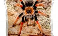 3dRose-pc_140139_1-Mexican-Painted-Leg-Tarantula-Spider-Na02-Dno0853-David-Northcott-Pillow-Case-16-x-16-8.jpg